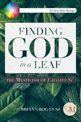Finding God in a Leaf: The Mysticism of Laudato Si'